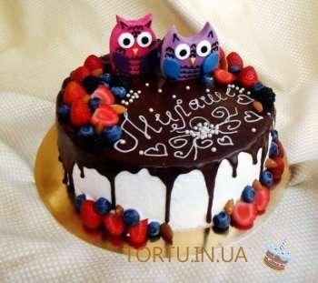 Фруктовий торт з совами